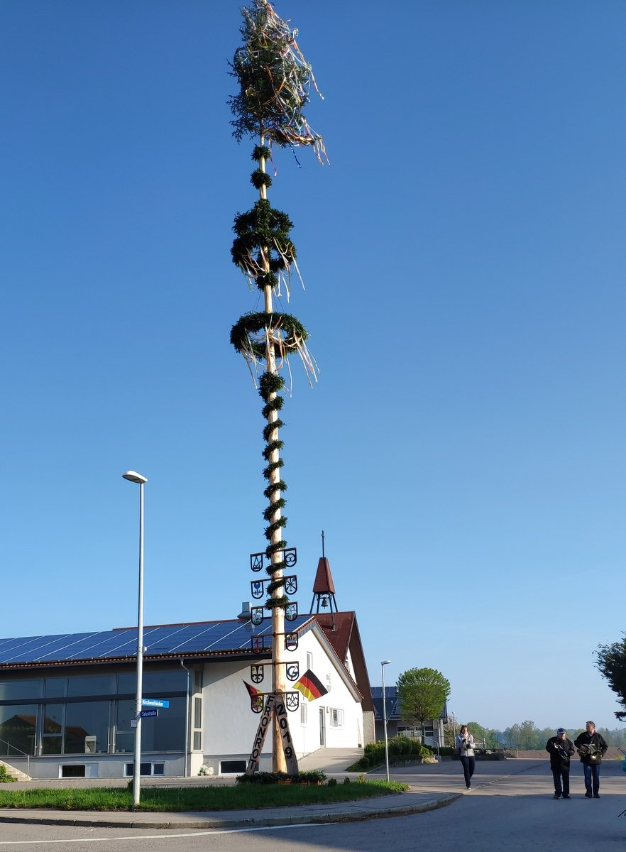 Maibaum in Fronrot
